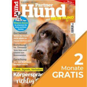Partner Hund Abo - aboandmore.ch