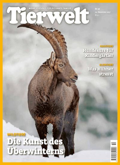 Tierwelt Zeitschrift im Abo