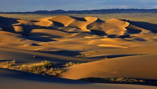 Wüste Gobi, Mongolei